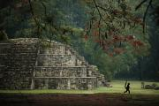 Monkeys Prints - Mayan Pyramidal Tomb, North Plaza Print by Kenneth Garrett