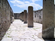 Michael Peychich - Mayan Ruins