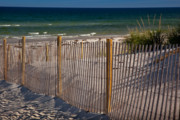 Topography Photos - Mayflower Beach by Susan Cole Kelly