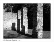 Oyster Art - McIntosh Sugar Mill Tabby Ruin Pillars by Rebecca  Stephens
