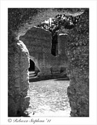 Historical Framed Prints - McIntosh Sugar Mill Tabby Ruins  Framed Print by Rebecca  Stephens