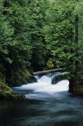 Cedar Creek Prints - McKenzie River Rush Print by Greg Vaughn - Printscapes