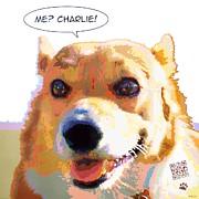 Max Yamada - Me Charlie