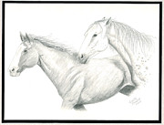 Horse Drawings Posters - Me First Poster by Joette Snyder