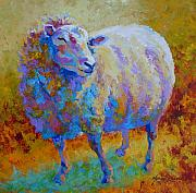 Llama Metal Prints - Me Me Me - Sheep Metal Print by Marion Rose