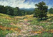 Open Pastels - Meadow by L Diane Johnson