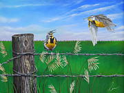 Barbed Wire Paintings - Meadow Larks in the Field by Cindy D Chinn