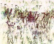 Postcards Photos - .meadow by Renata Vogl