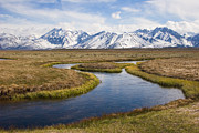 Owens River Art - Meander by Ei Katsumata