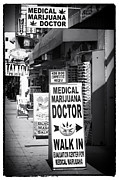 Golden State Prints - Medical Marijuana Doctor Print by John Rizzuto