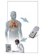 Text Message Framed Prints - Medical Monitoring Using A Mobile Phone Framed Print by Claus Lunau