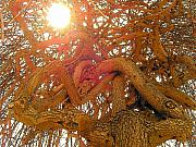 Tree Pyrography Metal Prints - Medusa Arboraceous Metal Print by Robert  Collier