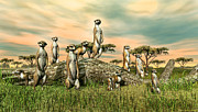 Meerkat Digital Art Prints - Meerkat Print by Walter Colvin
