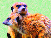 Dogs Digital Art Posters - Meerkats . 7D4176 Poster by Wingsdomain Art and Photography