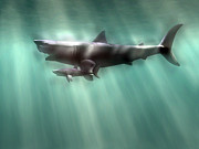 Megalodon Posters - Megalodon Shark And Great White Poster by Christian Darkin
