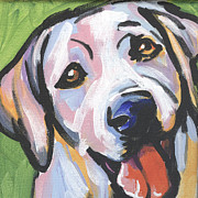 Modern Dog Art Paintings - Mellow Yellow by Lea