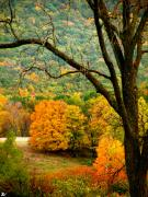 Colors Of Autumn Posters - Melody Of Autumn Iii Poster by Debra     Vatalaro