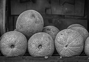 Food - Melons by Robert Ullmann