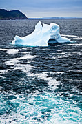 Drifting Photos - Melting iceberg by Elena Elisseeva
