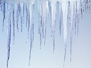 Icicles Posters - Melting Icicles Poster by Oleksiy Maksymenko