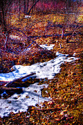 Snow Prints - Melting Snow in South Platte Park II Print by David Patterson