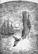Melville: Moby Dick Print by Granger