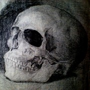 Nobody Drawings - Memento mori by Rimbu Iulian