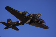 Blue Airplane Photos - Memphis Belle by Karol  Livote