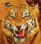 Growling Painting Prints - Menacing Tiger Print by Clarence Alford