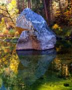 Merced River Prints - Merced Reflections Print by Mark Wilburn