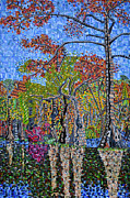 Carolina Paintings - Merchants Millpond State Park 1 by Micah Mullen