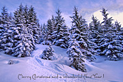 Wintry Photo Posters - Merry Christmas and a Wonderful New Year Poster by Sabine Jacobs