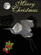 Ellenisworkshop Prints - Merry Christmas Great Egret In Flight Print by Eric Kempson