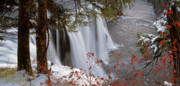 Water Flowing Posters - Mesa Falls Winter Poster by Leland Howard