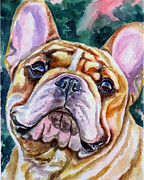 French Bulldog Paintings - Mesmerizing Eyes by Lyn Cook
