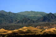 Barren Land Prints - Mesquite Flat Sand Dunes - Death Valley National Park CA USA Print by Christine Till