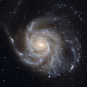 Spiral Galaxy Posters - Messier 101, The Pinwheel Galaxy Poster by Stocktrek Images