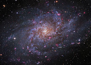 Interstellar Space Photos - Messier 33, Spiral Galaxy In Triangulum by Robert Gendler
