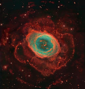 Bipolar Nebula Posters - Messier 57, The Ring Nebula Poster by Robert Gendler