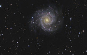 Pisces Photos - Messier 74, A Face-on Spiral Galaxy by R Jay GaBany