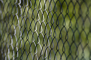 Dof Framed Prints - Metal fence Framed Print by Mats Silvan