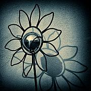 Lucca Photos - Metal Flower by David Bowman