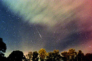 Meteor Shower Prints - Meteor Perseid Meteor Shower Print by Thomas R Fletcher