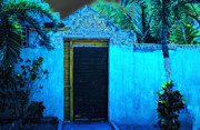 Carol Kinkead - Mexacali Night