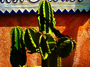 Florida House Prints - Mexican Style  Print by Susanne Van Hulst
