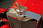 Kirkland Prints - MG NE Corkscrew Cap Print by Curt Johnson
