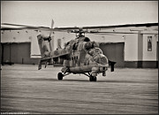Whiteman Framed Prints - Mi-24 Hind D  Framed Print by Lamyl Hammoudi