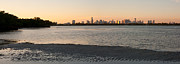 Miami Skyline Metal Prints - Miami at Low Tide Metal Print by Matt Tilghman