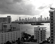 Miami Skyline Metal Prints - Miami Skyline  Metal Print by Merton Allen