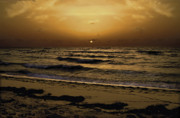 Beach Sunsets Photo Posters - Miami Sunrise Poster by Gary Dean Mercer Clark
